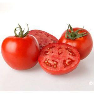 Семена томата Скиф F1 (Nunhems) 1000 семян — ультра-ранний (90-103 дн), красный, детерминантный, круглый