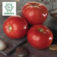 Семена томата Белла Роса F1/SAKATA, 1000 сем. — детерминантный, салатный, крупноплодный