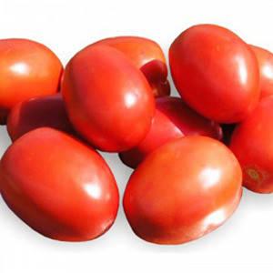 Томат Рио гранде/Griffaton, 500 гр. — семена сортового, детерминантного томата , фото 2