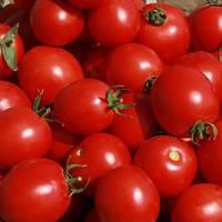 Семена томата Солероссо F1 (Nunhems/САДЫБА ЦЕНТР) 100 семян — ультраранний, красный, детерминантный, круглый