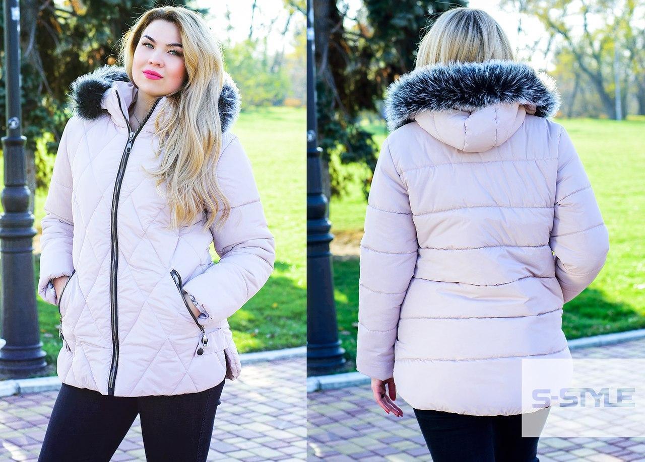Куртка женская с капюшоном синтепон 250   размеры 52,54,56