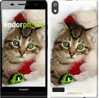 """Чехол на Huawei Ascend P6 Новогодний котёнок в шапке """"494c-39"""""""