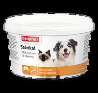 Salvical (Салвикал) Beaphar Витаминно-минеральная добавка для собак и кошек 250 гр