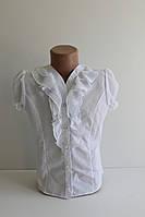 Блуза с жабо короткий рукав р. 116-146 см
