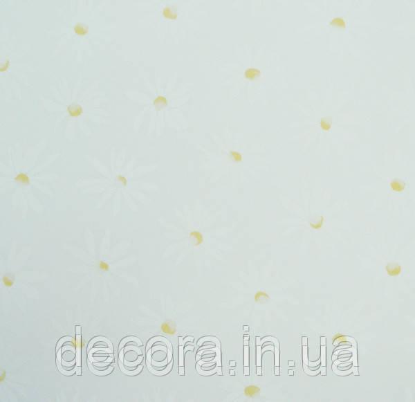 Рулонні штори Уні Camilla White 40см.