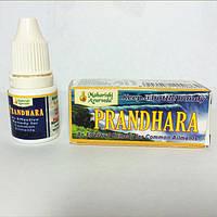 Прандхара — удачное сочетание эфирных масел в бальзаме,
