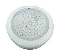 LED фитопанель для растений 50W(50х1W)
