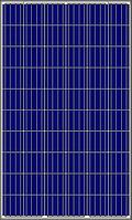 Солнечная батарея Amerisolar AS-6P30-260 (260W 4BB)