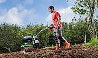 Обустройство целины, уничтожение сорняков и закладка сада