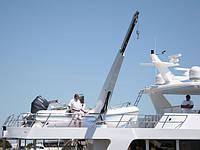 Кран-балка Brower systems WCL-2500, фото 1