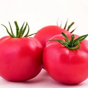 Семена розового томата Малинка Стар F1 (Пинк вейв F1)/Cora Seeds (500 сем) — ранний, индетерминантный