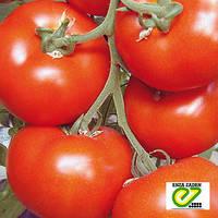 Семена томата Белле F1 50 сем (Enza Zaden/АГРОПАК+) — ранний (65 дн), красный, плоско-круглый,индетерминантный