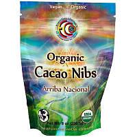 Earth Circle Organics, Органические ядра какао-бобов Arriba Nacional, 8 унций (226,7 г)