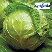 Семена капусты Джетодор F1 2500 семян (Syngenta) — УЛЬТРА-РАННИЙ гибрид (44-46 дней), белокочанная.