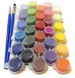 Картины по номерам Разноцветные попугаи, 40х50см. (КНО4028), фото 4