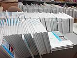 Картины по номерам Разноцветные попугаи, 40х50см. (КНО4028), фото 10