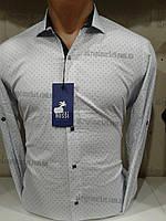 """Мужская рубашка (44-52) """"Rossi"""" - купить оптом со склада ZR-4473"""