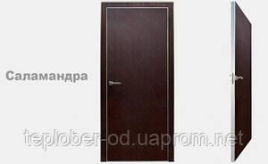 """Двери СЕРИЯ """"ЛОФТ"""" - цвет САЛАМАНДРА"""