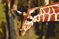 "Картина по номерам - ""Жираф"" (без коробки)"