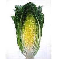 Семена салата Квинтус (1000 драже)