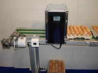 Принтер для маркировки яиц в лотках Vibox EGGJET EJ14/EJ16