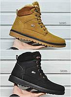 Мужские зимние ботинки Lacoste Оплата при получении!