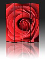 Ширма Промарт Україна Большая роза 160х180 см