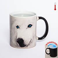 Чашка хамелеон Снежный пес