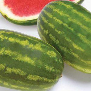 Семена арбуза Фарао F1 (Syngenta/ АГРОПАК+) 50 сем — (65-70 дн), удлиненной формы,СЛАДКИЙ! вес 15-18 (до 35)кг