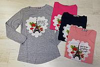 Реглан для девочек оптом, Miss Girl, 4-12 рр., Арт. CSQ-99050