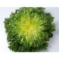 Семена салата Бенефайн, (5000 сем.)