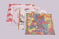 Раскраска-антистресс: 12 листов, 24 картинки, в ассортименте