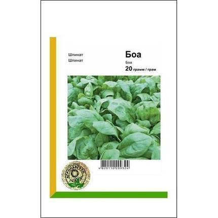 Семена шпината Боа (Rijk Zwaan/Агропак+), 20 г — ранний (45 дней), холодоустойчивый, листья округлые, фото 2
