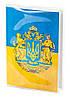 Обложка для паспорта ПВХ с вкладышем PVC/PA0004