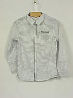 Детская одежда Glo-Story: BCS-3988 Белый