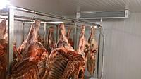 Камера хранения охлаждённого мяса