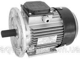 Электродвигатель АИР 80 В4 У2 (ф\л)