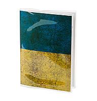 Обложка для паспорта ПВХ с вкладышем PVC/PA0011, фото 1