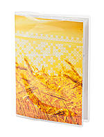 Обложка для паспорта ПВХ с вкладышем PVC/PA0012, фото 1