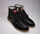 Мужские ботинки Dickies Pure WL