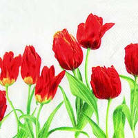 """Салфетка 33х33см (1шт) """"Красные тюльпаны"""" белый"""
