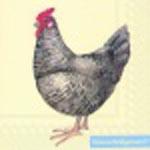 "Салфетка 25х25см (1шт) ""Курица"""