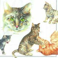 """Салфетка 33х33см (1шт) """"Коты и котята"""""""