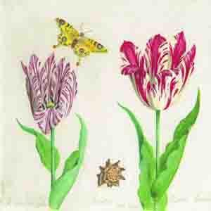 """Салфетка 33х33см (1шт) """"Тюльпаны и бабочка"""" кремовый"""