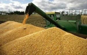 В какие страны выгоднее экспортировать аграрную продукцию?