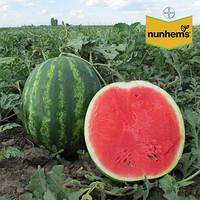 Семена арбуза Талисман F1 (Nunhems / САДЫБА ЦЕНТР) 5 сем - ранний гибрид (60-65 дн), округлые, полосатые плоды