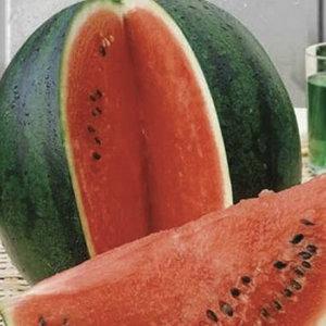Семена арбуза Шуга Бэйби (Satimex / САДЫБА ЦЕНТР) 0,5 г — ранний сорт (65-70 дн), округлый, темно-зелёный, фото 2
