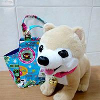Собачка  в сумочке , фото 1