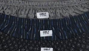 Трусы мужские семейные хлопок «KARLO» размер L-4XL(48-58)