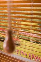 Жалюзи бамбуковые разноцветные производство под заказ покупателя приглашаем дилеров в Украине